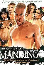 the chronicles of mandingo