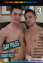 gay poles for straight holes 3