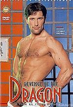 revenge of the dragon 1