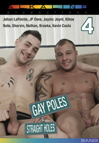 gay poles for straight holes 4