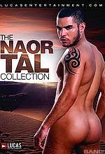 naor tal collection