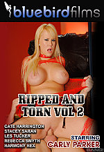 ripped and torn vol 2