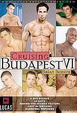 cruising budapest 6