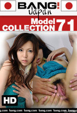 model collection 71