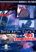 diary of a mad porn director