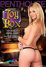 penthouse toy box