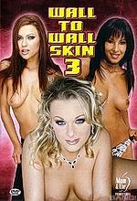 wall to wall skin #3